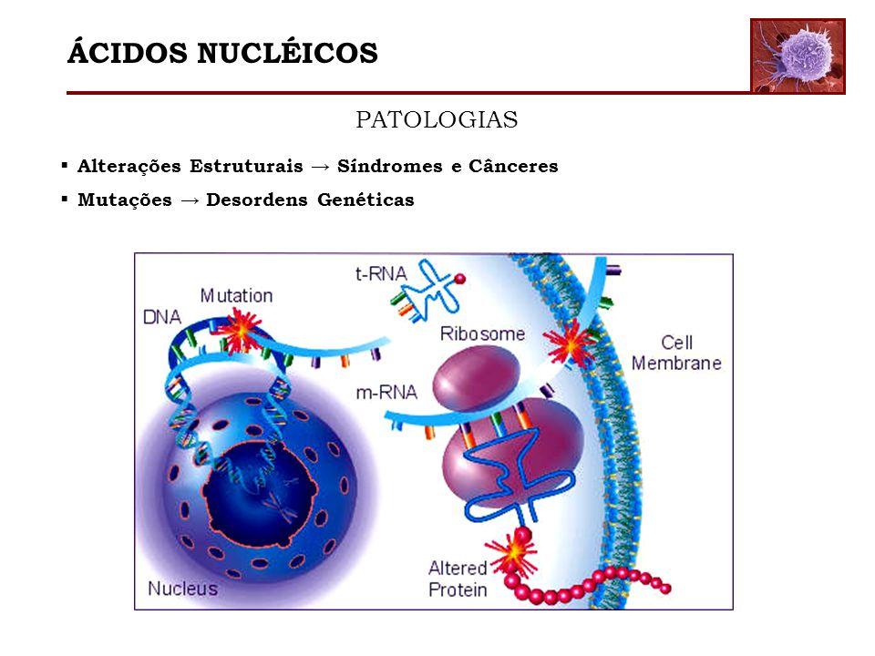 Alterações Estruturais Síndromes e Cânceres Mutações Desordens Genéticas ÁCIDOS NUCLÉICOS PATOLOGIAS