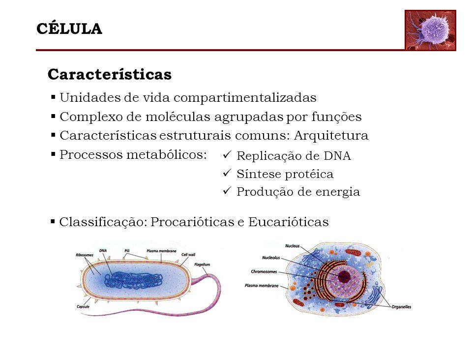 Características Unidades de vida compartimentalizadas Complexo de moléculas agrupadas por funções Características estruturais comuns: Arquitetura Proc