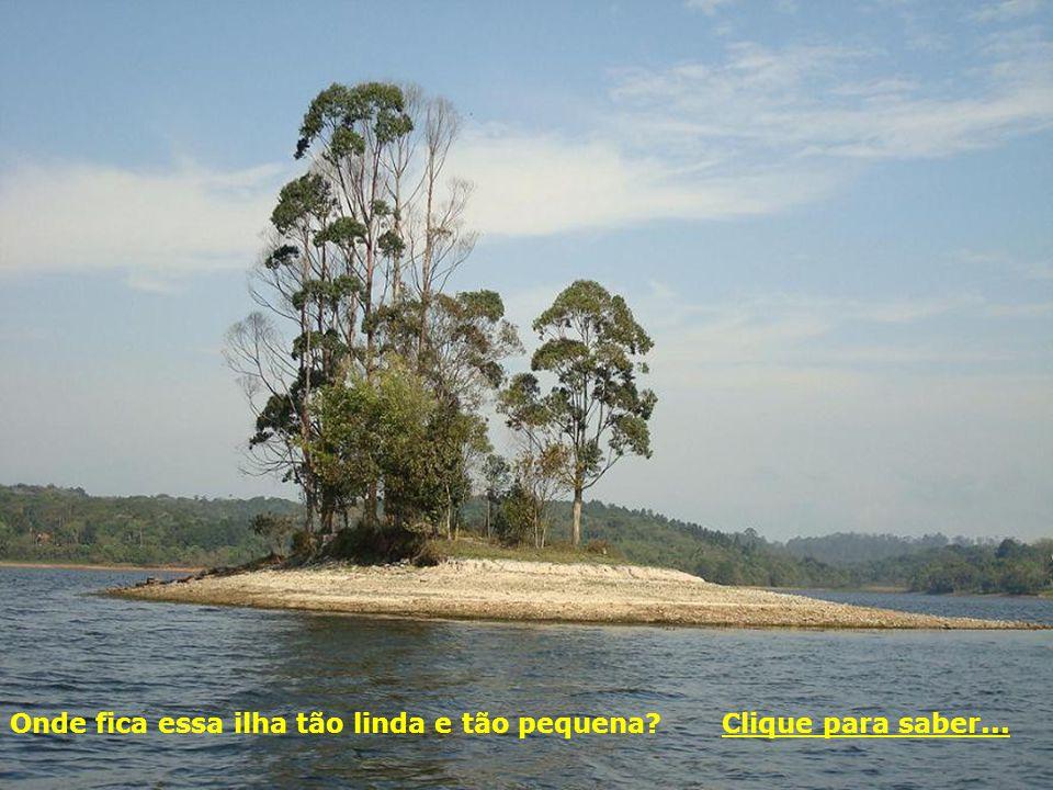 Imagens do Parque Santo Dias Trilha de Cooper, com cerca de 1 km de extensão Entrada do Parque, na Rua Jasmim da Beirada, nº 71 (portão 1). CECCO Sant