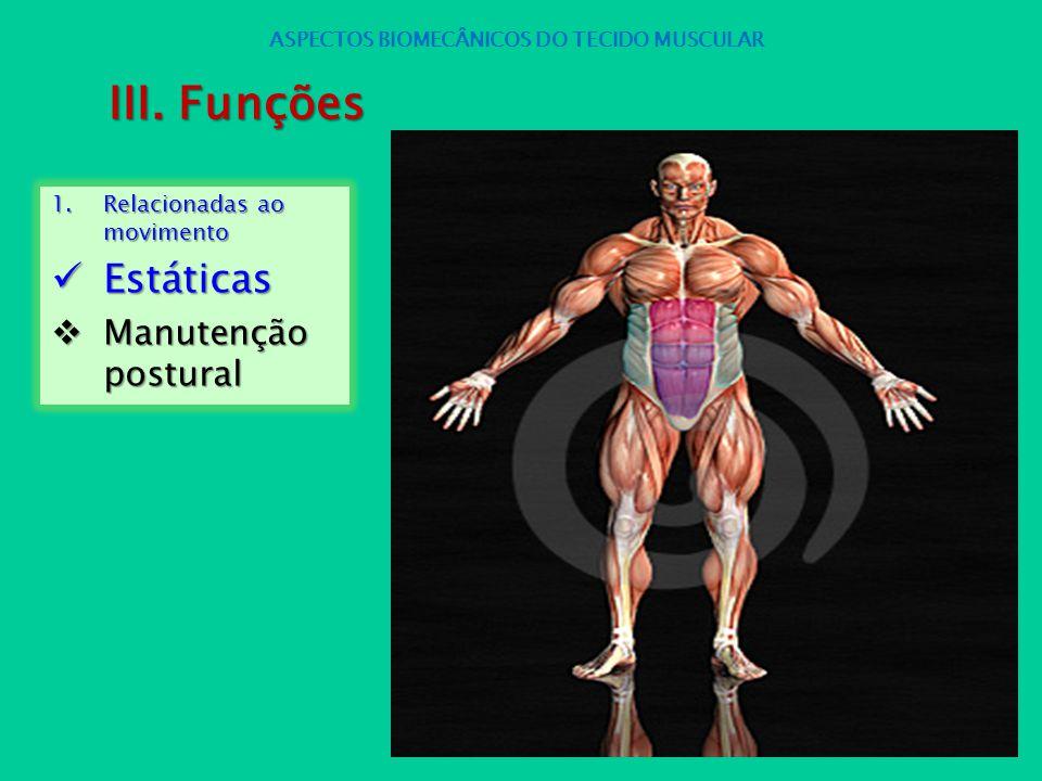 1.Relacionadas ao movimento Estáticas Estáticas Manutenção postural Manutenção postural ASPECTOS BIOMECÂNICOS DO TECIDO MUSCULAR III. Funções