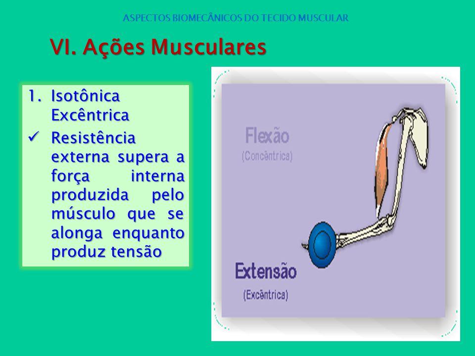1.Isotônica Excêntrica Resistência externa supera a força interna produzida pelo músculo que se alonga enquanto produz tensão Resistência externa supe