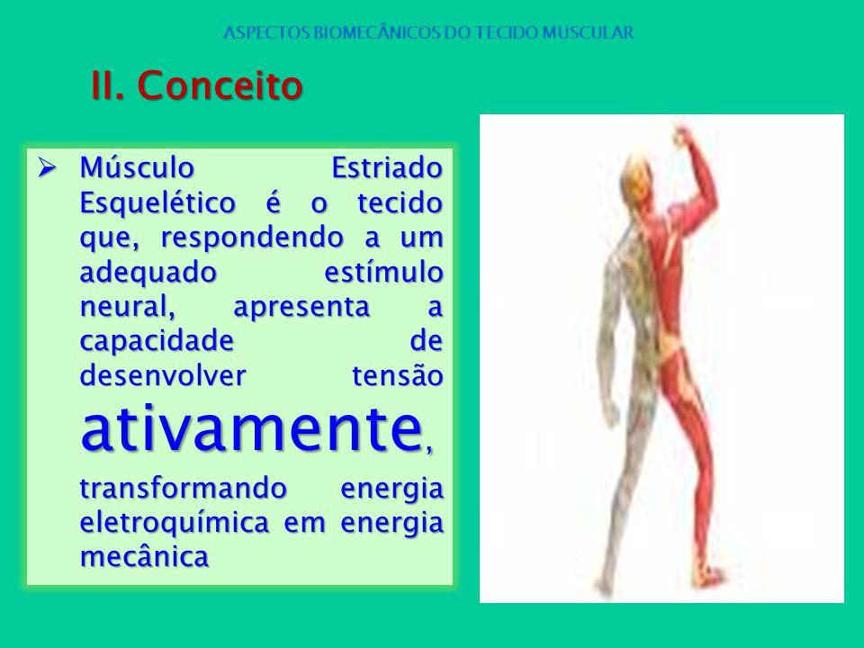 Músculo Estriado Esquelético é o tecido que, respondendo a um adequado estímulo neural, apresenta a capacidade de desenvolver tensão ativamente, trans