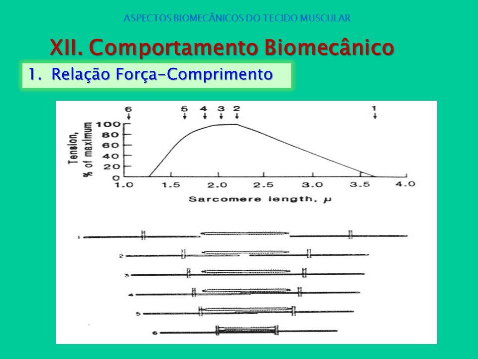 1.Relação Força-Comprimento ASPECTOS BIOMECÂNICOS DO TECIDO MUSCULAR XII. Comportamento Biomecânico