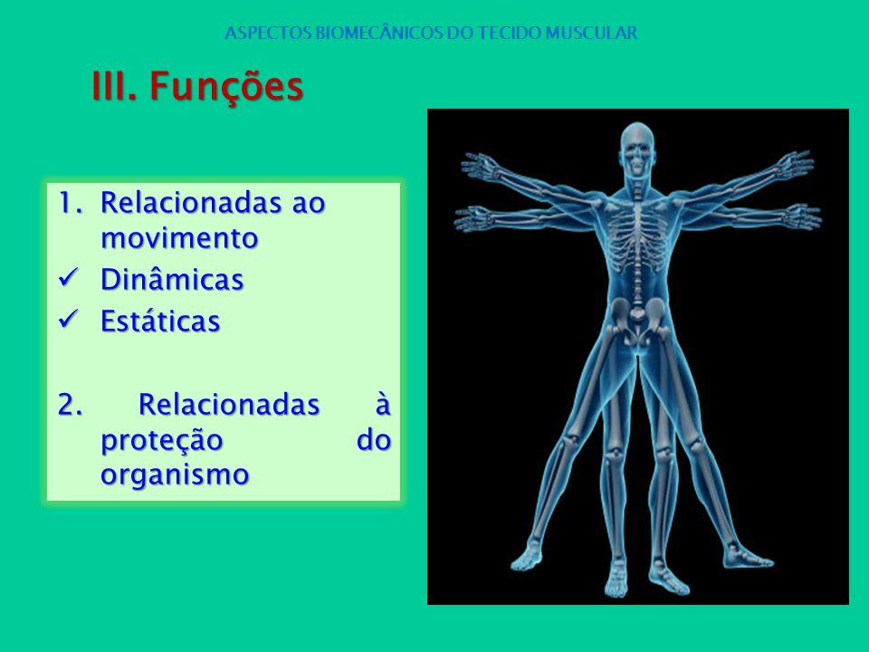 1.Relacionadas ao movimento Dinâmicas Dinâmicas Estáticas Estáticas 2. Relacionadas à proteção do organismo ASPECTOS BIOMECÂNICOS DO TECIDO MUSCULAR I