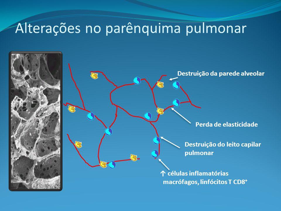 Destruição da parede alveolar Perda de elasticidade Destruição do leito capilar pulmonar células inflamatórias macrófagos, linfócitos T CD8 + Alterações no parênquima pulmonar