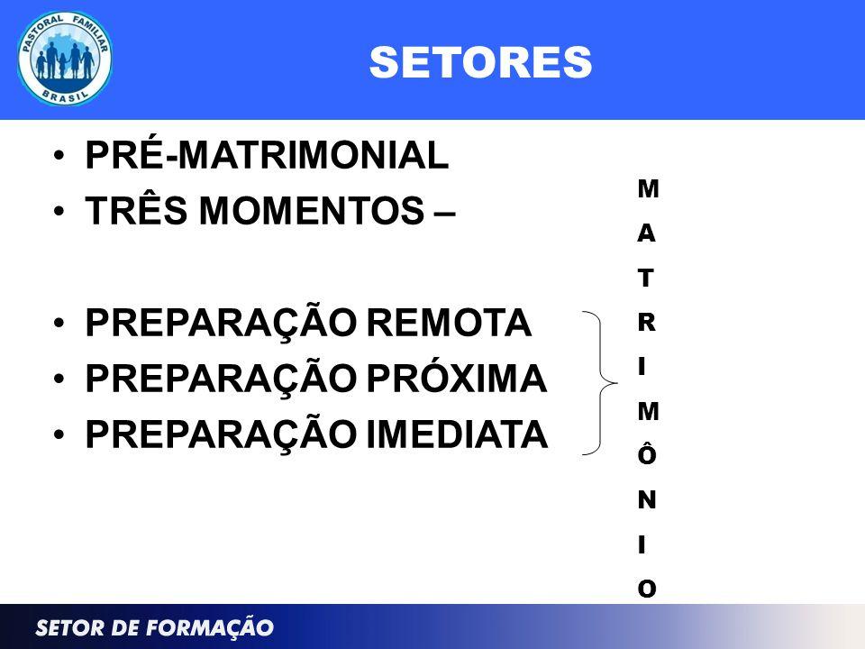 SETORES PRÉ-MATRIMONIAL TRÊS MOMENTOS – PREPARAÇÃO REMOTA PREPARAÇÃO PRÓXIMA PREPARAÇÃO IMEDIATA MATRIMÔNIOMATRIMÔNIO