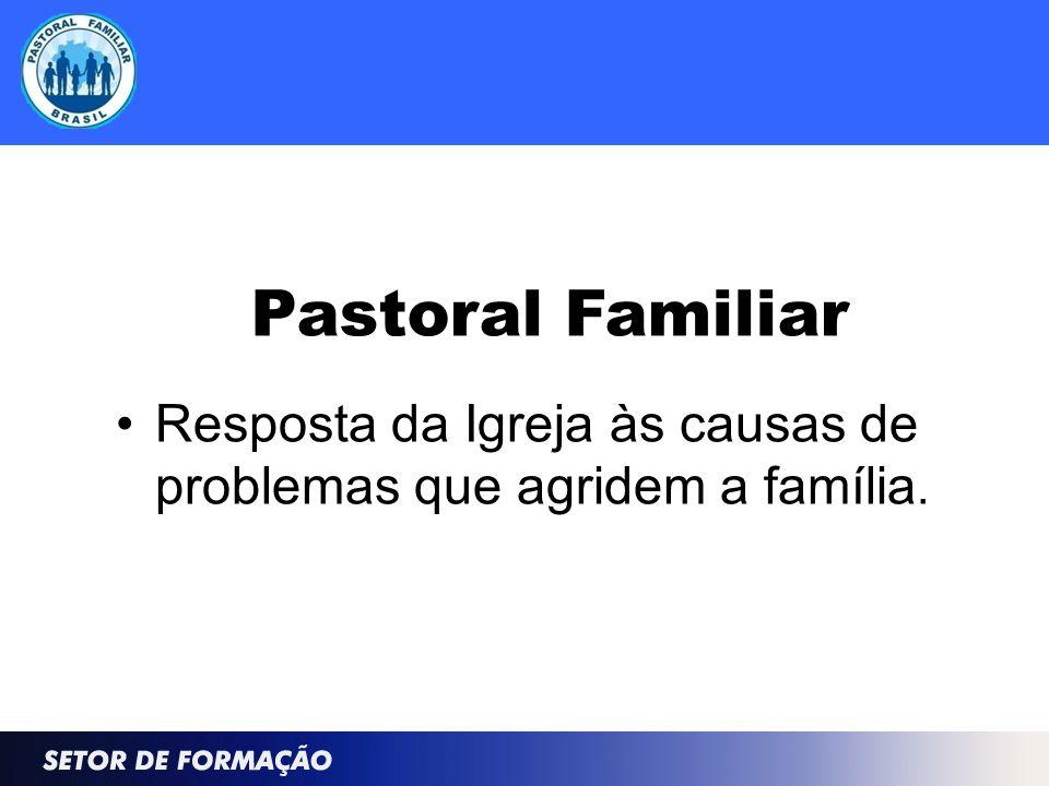 Pastoral Familiar Resposta da Igreja às causas de problemas que agridem a família.