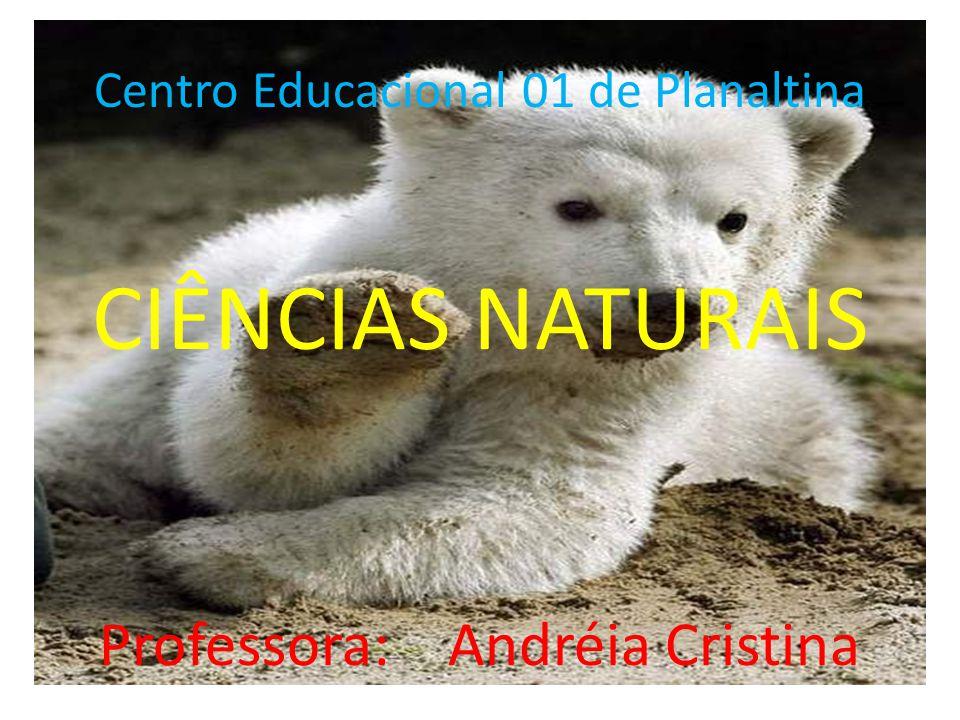 Centro Educacional 01 de Planaltina CIÊNCIAS NATURAIS Professora: Andréia Cristina
