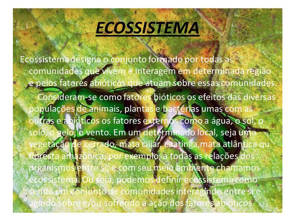 ECOSSISTEMA Ecossistema designa o conjunto formado por todas as comunidades que vivem e interagem em determinada região e pelos fatores abióticos que
