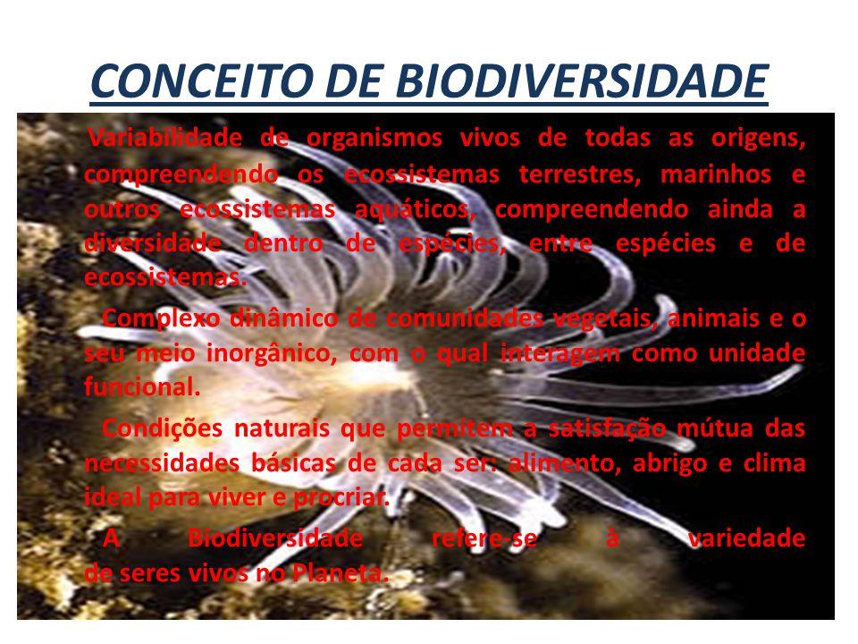 CONCEITO DE BIODIVERSIDADE Variabilidade de organismos vivos de todas as origens, compreendendo os ecossistemas terrestres, marinhos e outros ecossist