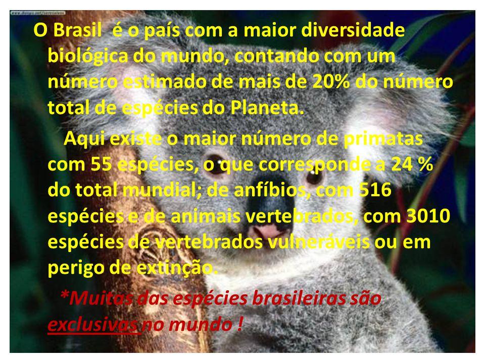 O Brasil é o país com a maior diversidade biológica do mundo, contando com um número estimado de mais de 20% do número total de espécies do Planeta. A