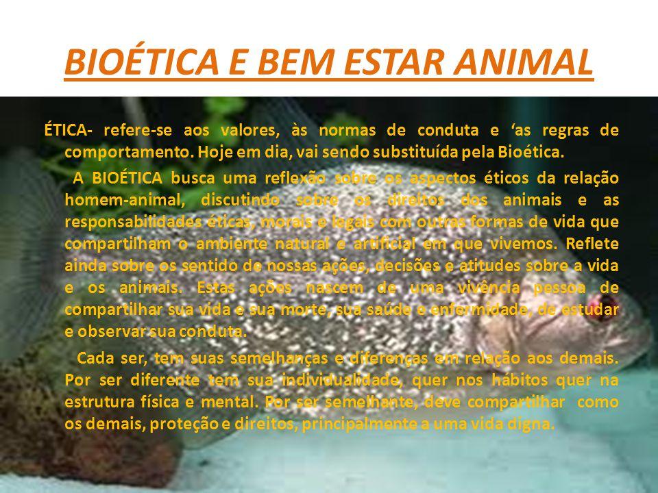 BIOÉTICA E BEM ESTAR ANIMAL ÉTICA- refere-se aos valores, às normas de conduta e as regras de comportamento. Hoje em dia, vai sendo substituída pela B