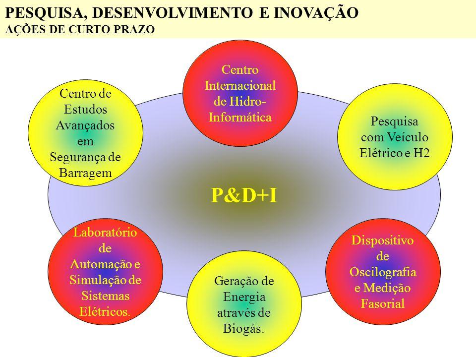 P&D+I PESQUISA, DESENVOLVIMENTO E INOVAÇÃO AÇÕES DE CURTO PRAZO Centro de Estudos Avançados em Segurança de Barragem Laboratório de Automação e Simula