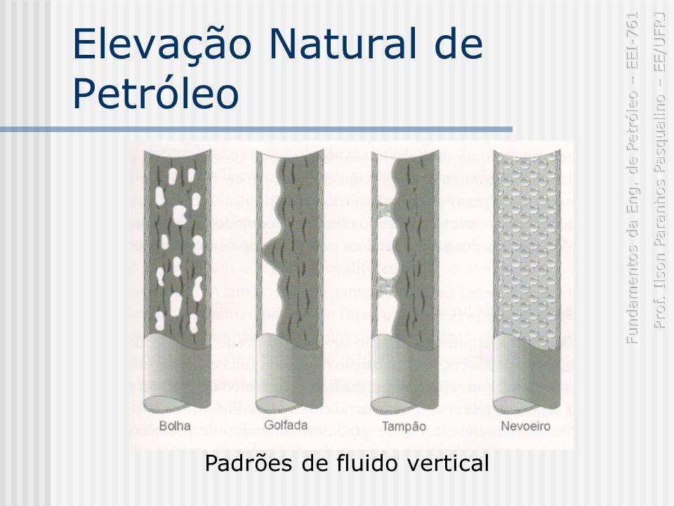 Elevação Natural de Petróleo Padrões de fluido vertical
