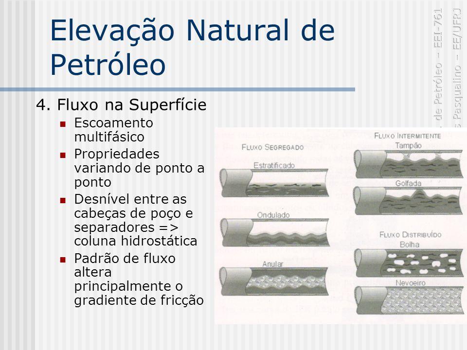 Elevação Natural de Petróleo 4.