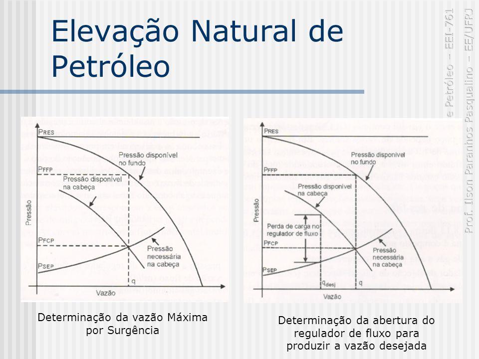 Elevação Natural de Petróleo Determinação da vazão Máxima por Surgência Determinação da abertura do regulador de fluxo para produzir a vazão desejada