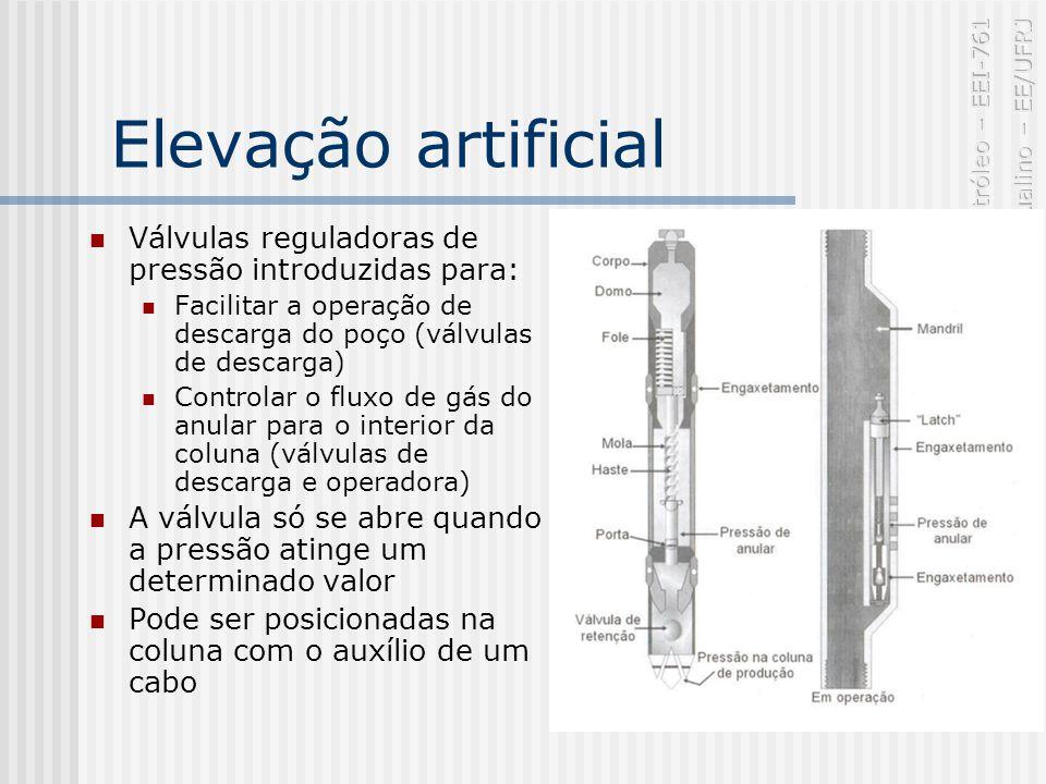 Elevação artificial Válvulas reguladoras de pressão introduzidas para: Facilitar a operação de descarga do poço (válvulas de descarga) Controlar o fluxo de gás do anular para o interior da coluna (válvulas de descarga e operadora) A válvula só se abre quando a pressão atinge um determinado valor Pode ser posicionadas na coluna com o auxílio de um cabo
