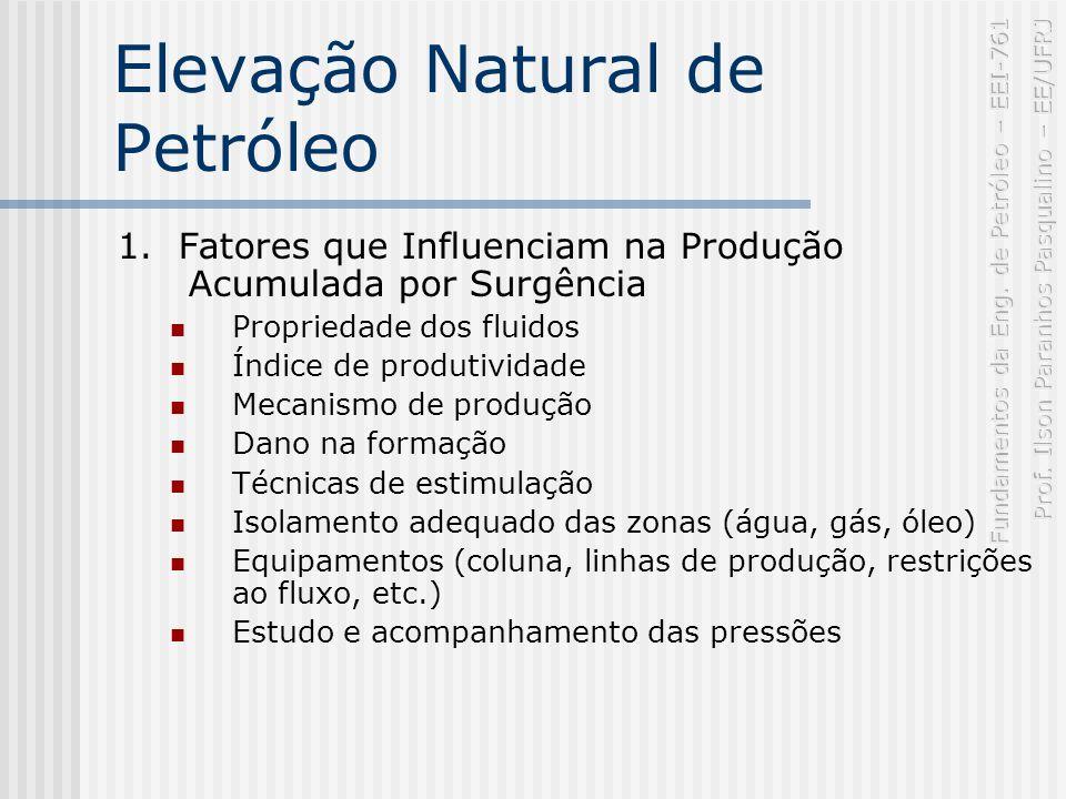 Elevação Natural de Petróleo 1.