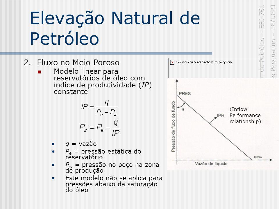 Elevação Natural de Petróleo 2.