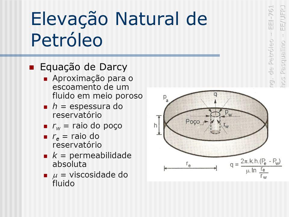 Elevação Natural de Petróleo Equação de Darcy Aproximação para o escoamento de um fluido em meio poroso h = espessura do reservatório r w = raio do poço r e = raio do reservatório k = permeabilidade absoluta = viscosidade do fluido