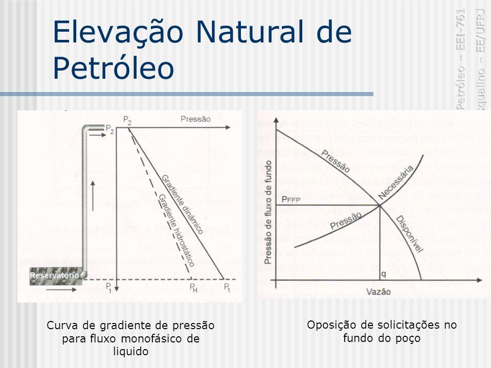Elevação Natural de Petróleo Curva de gradiente de pressão para fluxo monofásico de liquido Oposição de solicitações no fundo do poço