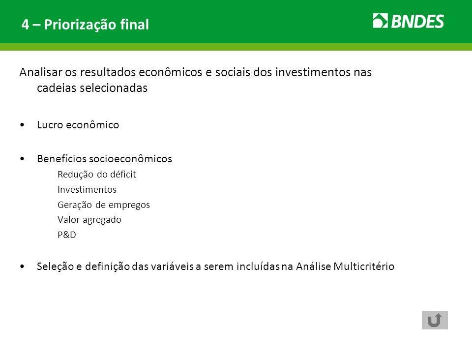 Analisar os resultados econômicos e sociais dos investimentos nas cadeias selecionadas Lucro econômico Benefícios socioeconômicos Redução do déficit I