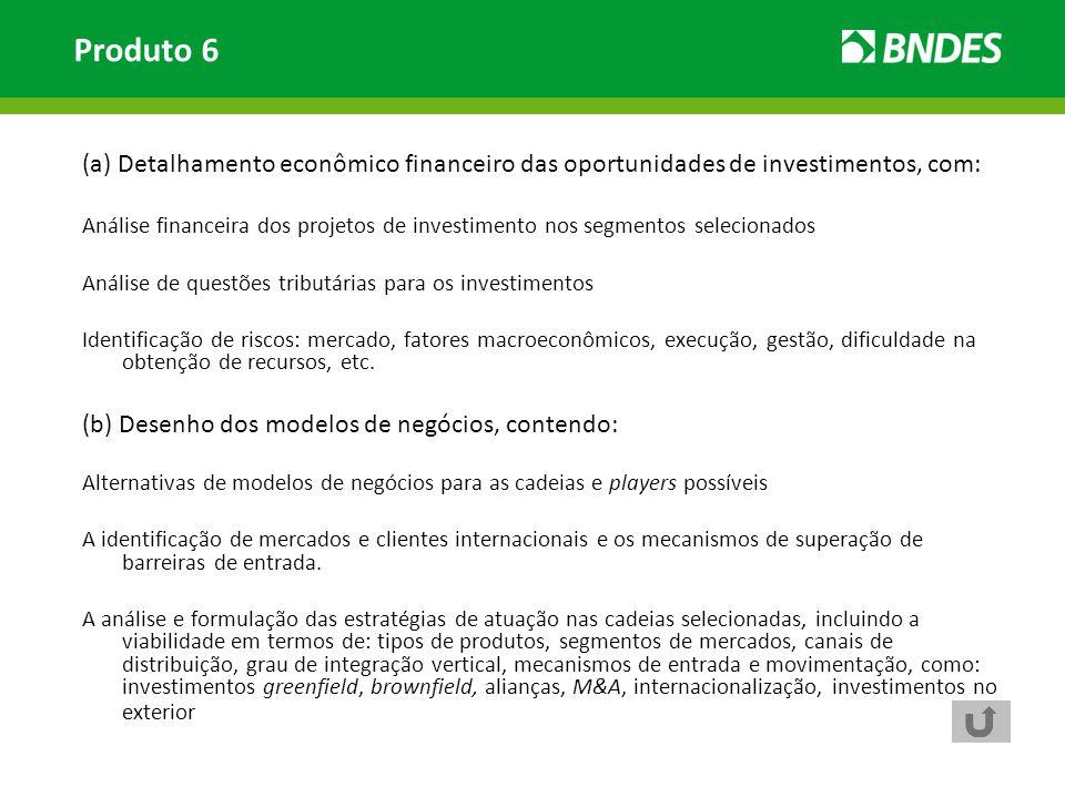 (a) Detalhamento econômico financeiro das oportunidades de investimentos, com: Análise financeira dos projetos de investimento nos segmentos seleciona