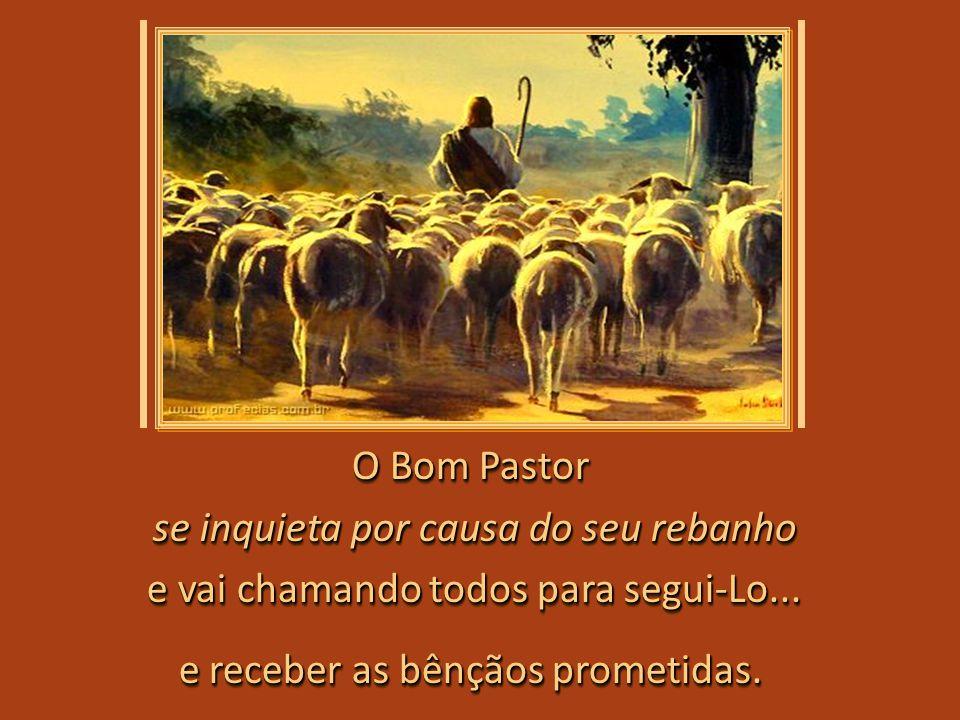 Dou a minha vida pelas minhas ovelhas... Eu lhes dou a vida eterna; elas jamais hão de perecer, elas jamais hão de perecer, e ninguém as roubará de mi