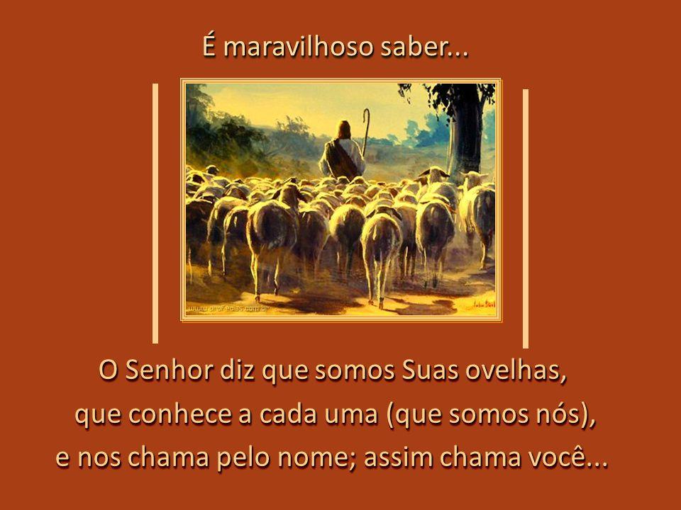 O Senhor diz que somos Suas ovelhas, que conhece a cada uma (que somos nós), e nos chama pelo nome; assim chama você...