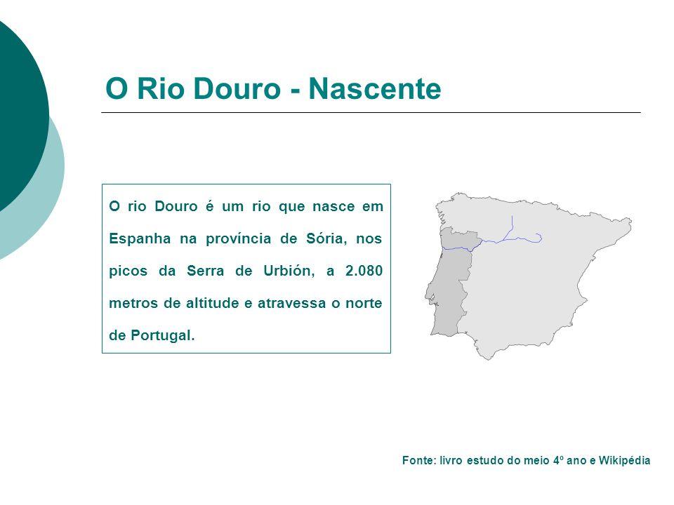 O rio Douro é um rio que nasce em Espanha na província de Sória, nos picos da Serra de Urbión, a 2.080 metros de altitude e atravessa o norte de Portugal.