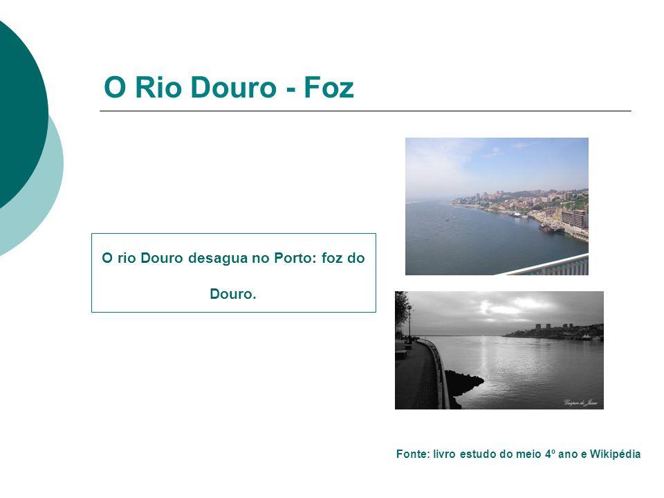 O rio Douro desagua no Porto: foz do Douro. O Rio Douro - Foz Fonte: livro estudo do meio 4º ano e Wikipédia