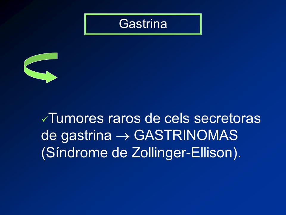 Gastrina Tumores raros de cels secretoras de gastrina GASTRINOMAS (Síndrome de Zollinger-Ellison).