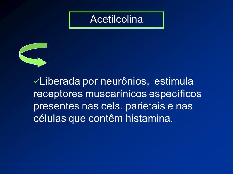 Acetilcolina Liberada por neurônios, estimula receptores muscarínicos específicos presentes nas cels.