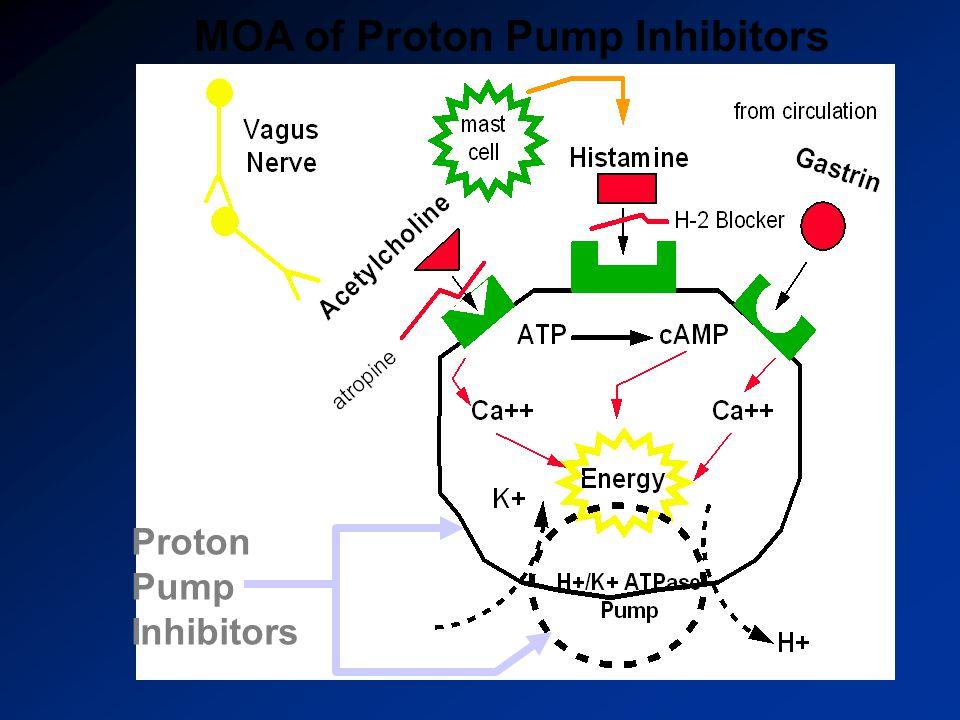 Proton Pump Inhibitors MOA of Proton Pump Inhibitors