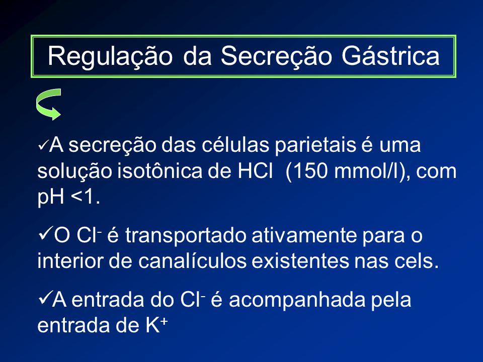 Regulação da Secreção Gástrica A secreção das células parietais é uma solução isotônica de HCl (150 mmol/l), com pH <1.