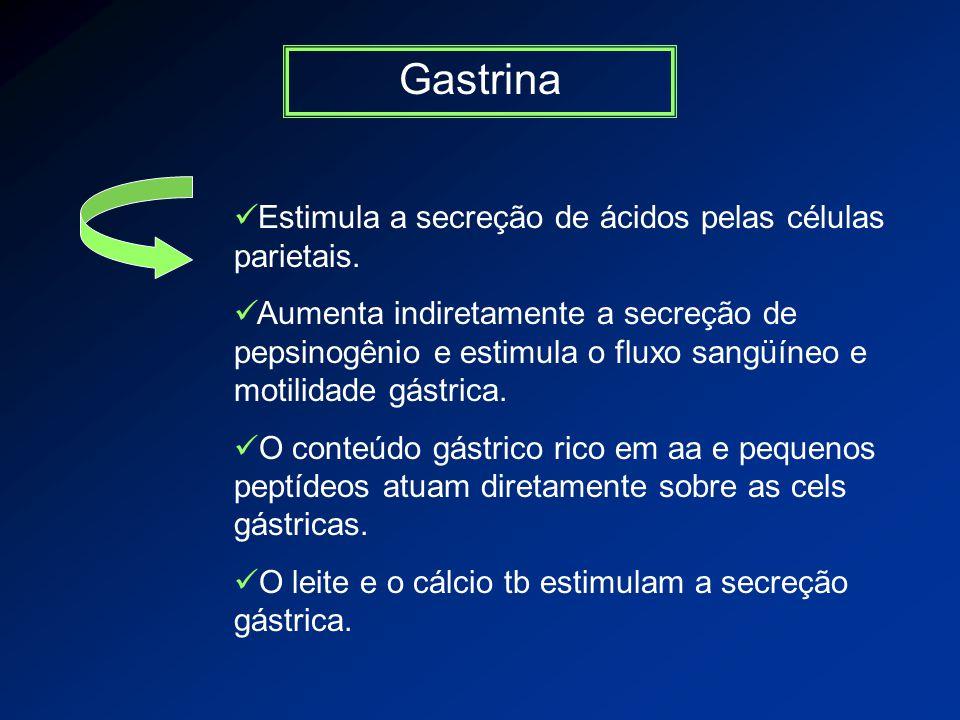 Gastrina Estimula a secreção de ácidos pelas células parietais.