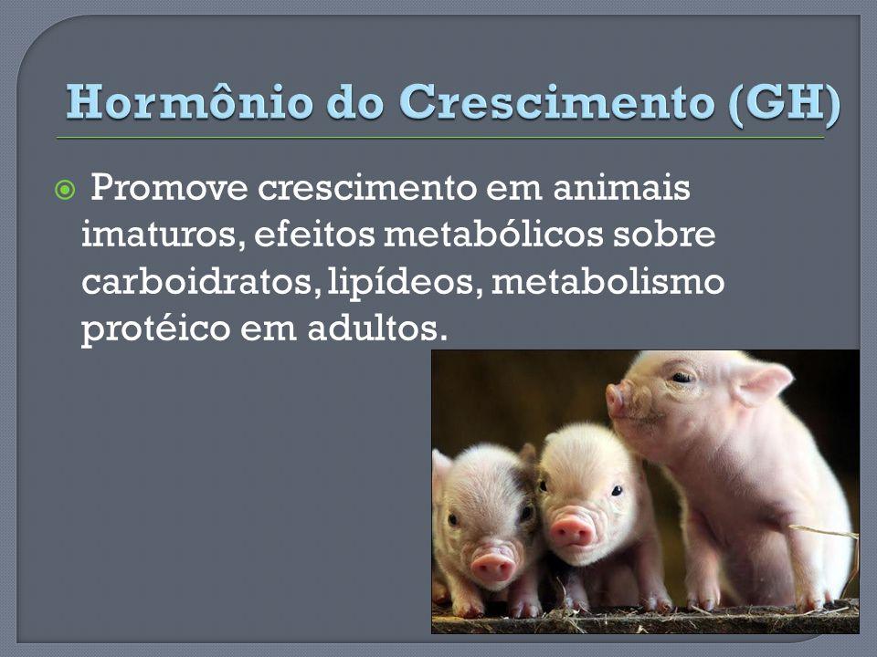 Promove crescimento em animais imaturos, efeitos metabólicos sobre carboidratos, lipídeos, metabolismo protéico em adultos.