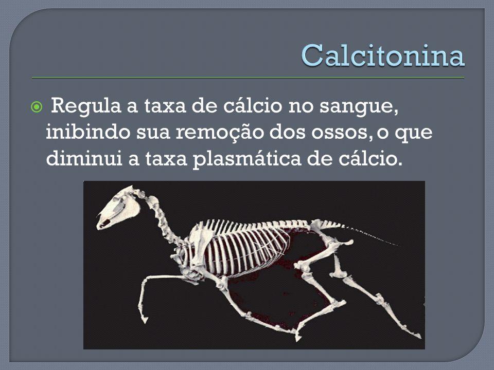 Regula a taxa de cálcio no sangue, inibindo sua remoção dos ossos, o que diminui a taxa plasmática de cálcio.