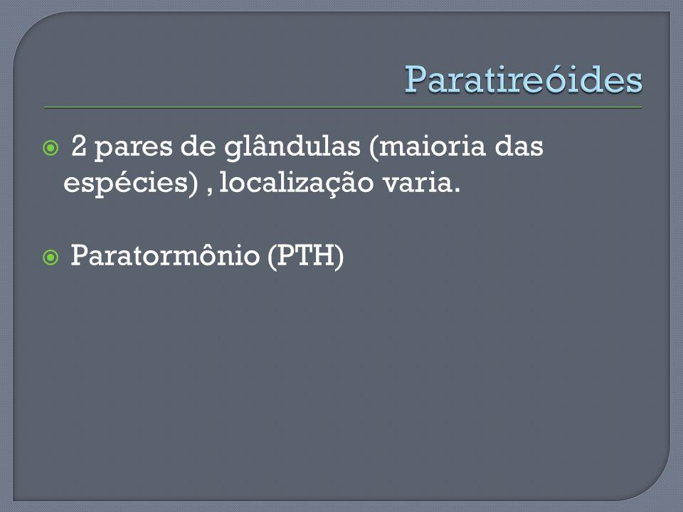 2 pares de glândulas (maioria das espécies), localização varia. Paratormônio (PTH)
