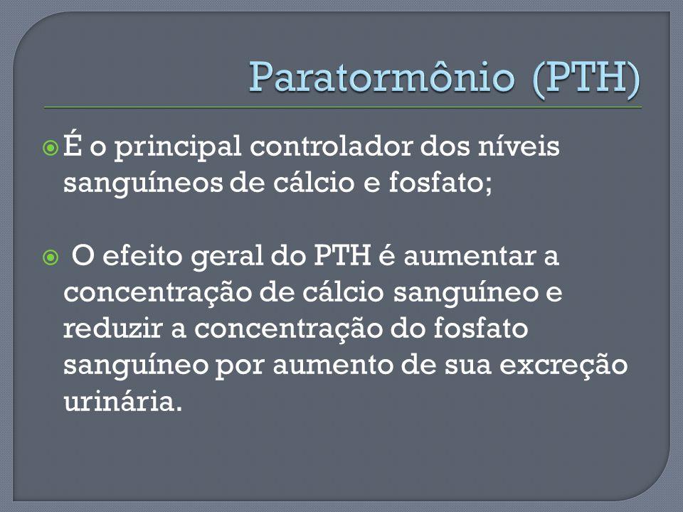É o principal controlador dos níveis sanguíneos de cálcio e fosfato; O efeito geral do PTH é aumentar a concentração de cálcio sanguíneo e reduzir a c