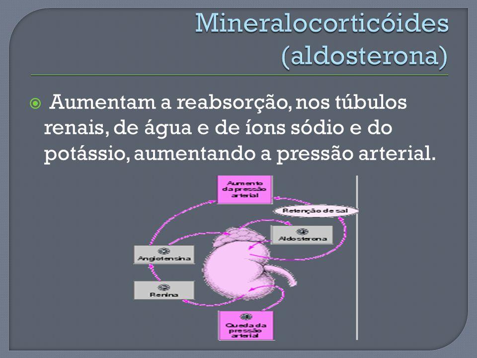 Aumentam a reabsorção, nos túbulos renais, de água e de íons sódio e do potássio, aumentando a pressão arterial.