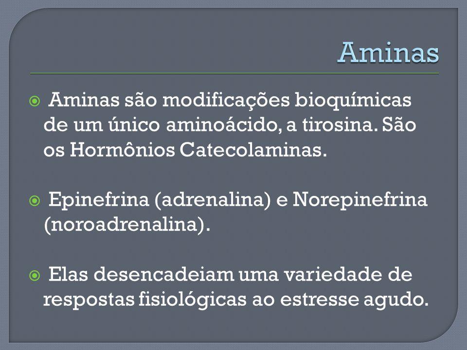 Aminas são modificações bioquímicas de um único aminoácido, a tirosina. São os Hormônios Catecolaminas. Epinefrina (adrenalina) e Norepinefrina (noroa