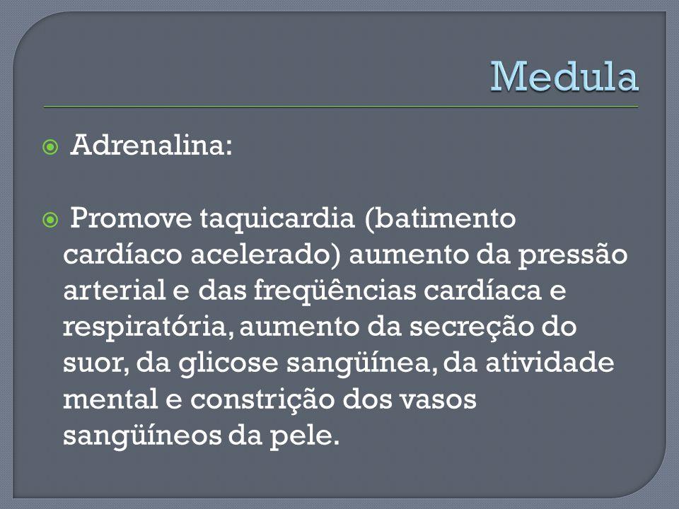 Adrenalina: Promove taquicardia (batimento cardíaco acelerado) aumento da pressão arterial e das freqüências cardíaca e respiratória, aumento da secre