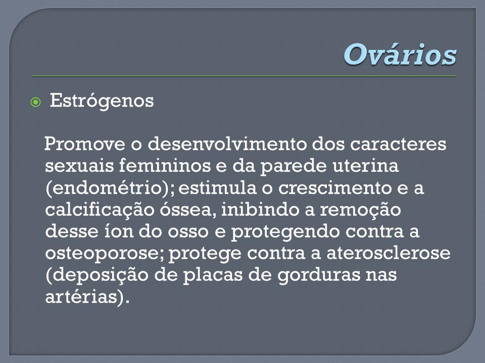 Estrógenos Promove o desenvolvimento dos caracteres sexuais femininos e da parede uterina (endométrio); estimula o crescimento e a calcificação óssea,