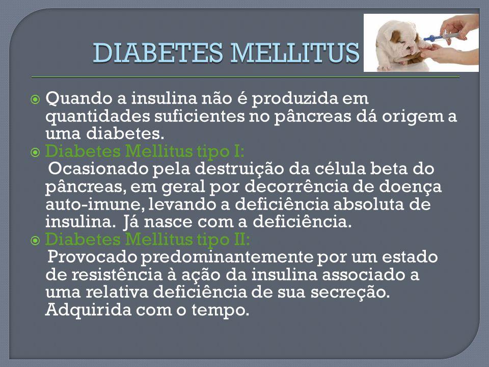 Quando a insulina não é produzida em quantidades suficientes no pâncreas dá origem a uma diabetes. Diabetes Mellitus tipo I: Ocasionado pela destruiçã