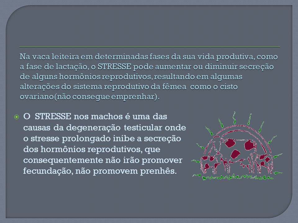 O STRESSE nos machos é uma das causas da degeneração testicular onde o stresse prolongado inibe a secreção dos hormônios reprodutivos, que consequente
