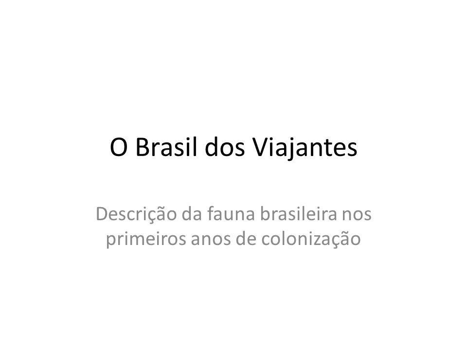 O Brasil dos Viajantes Descrição da fauna brasileira nos primeiros anos de colonização