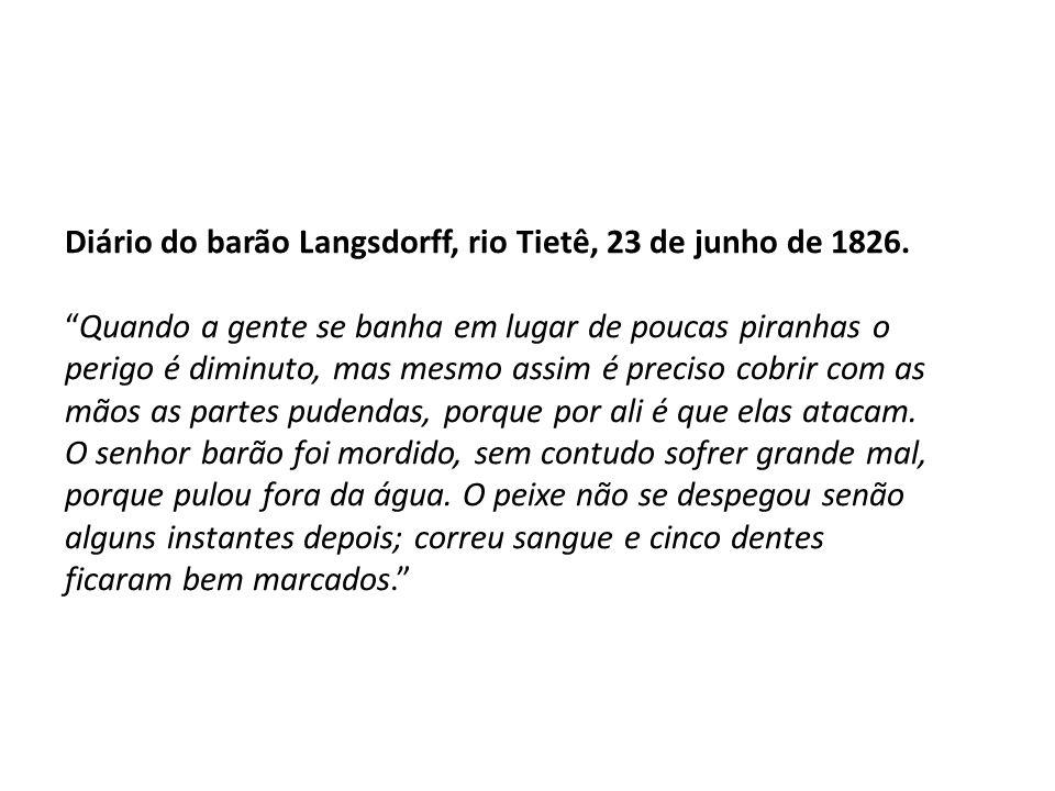 Diário do barão Langsdorff, rio Tietê, 23 de junho de 1826. Quando a gente se banha em lugar de poucas piranhas o perigo é diminuto, mas mesmo assim é