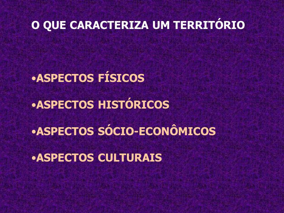 O QUE CARACTERIZA UM TERRITÓRIO ASPECTOS FÍSICOS ASPECTOS HISTÓRICOS ASPECTOS SÓCIO-ECONÔMICOS ASPECTOS CULTURAIS