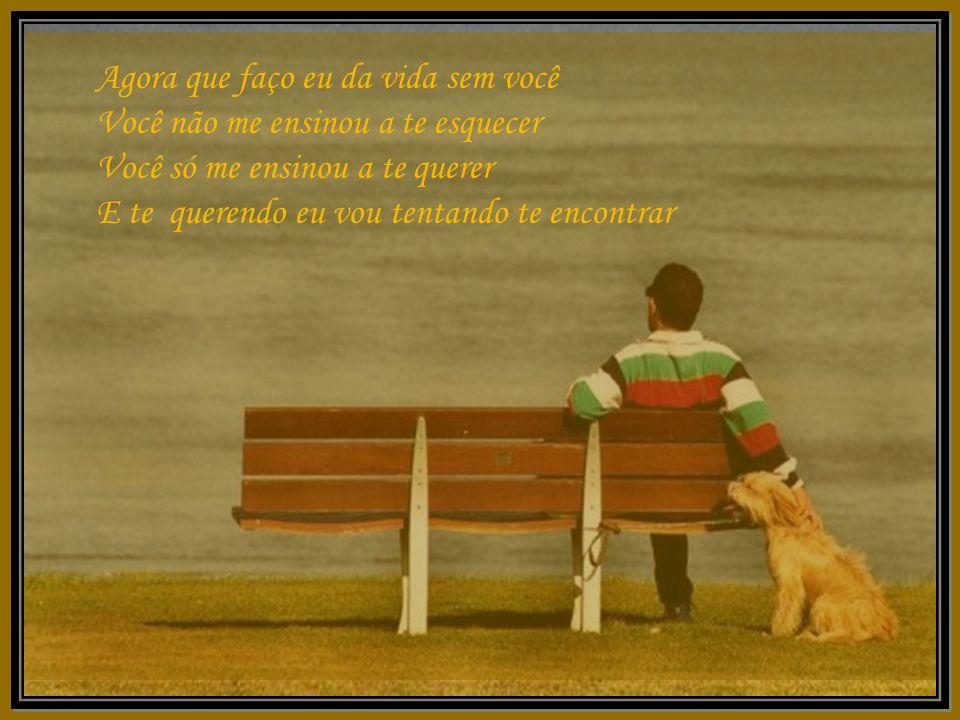 Agora que faço eu da vida sem você Você não me ensinou a te esquecer Você só me ensinou a te querer E te querendo eu vou tentando te encontrar